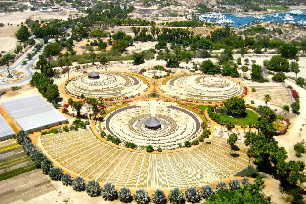 wirikuta botanical park